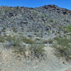 13829 S. CANYON DR. PHOENIX, AZ